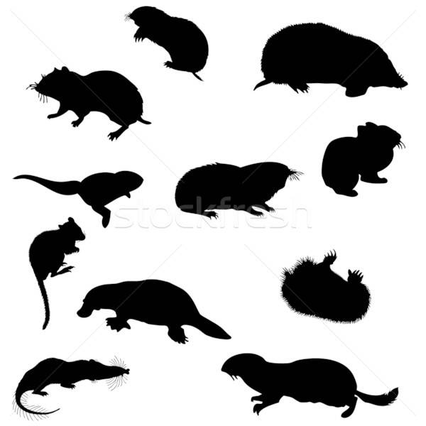 beavers silhouettes set Stock photo © angelp