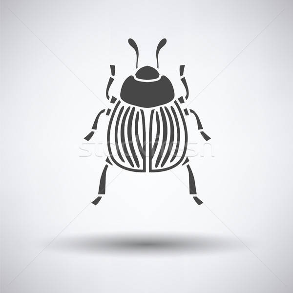 Колорадо жук икона серый саду фермы Сток-фото © angelp