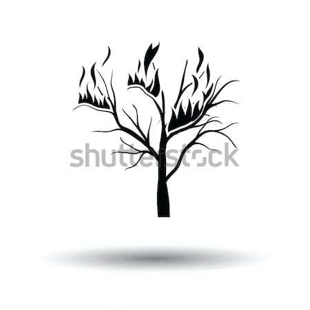 Wildfire ikona pomarańczowy czarny lasu charakter Zdjęcia stock © angelp
