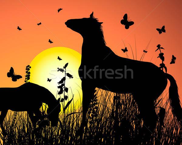Caballo puesta de sol fondo silueta vector cielo Foto stock © angelp