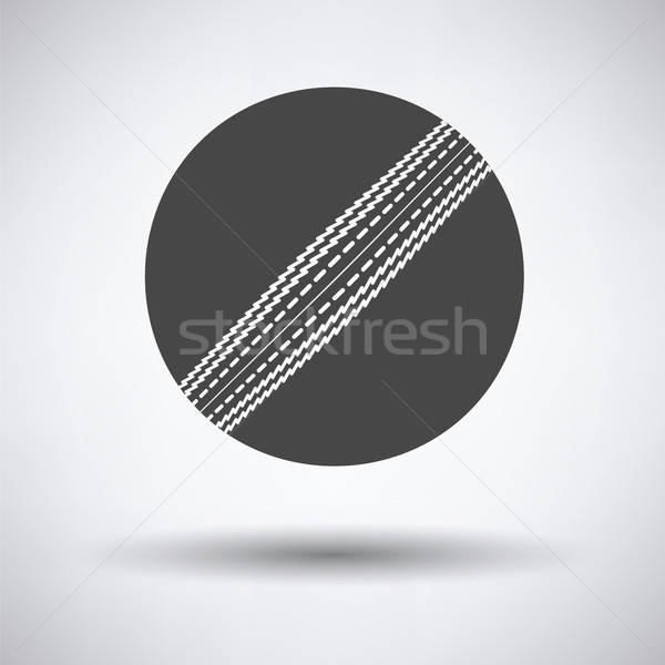 крикет мяча икона серый спорт знак Сток-фото © angelp
