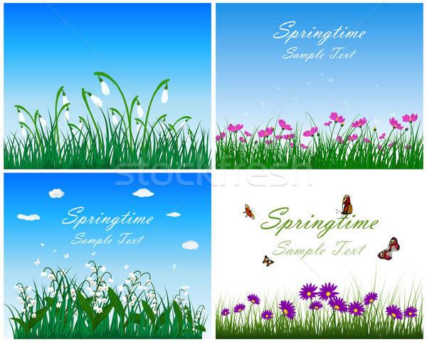 весна луговой набор Blue Sky бабочки Сток-фото © angelp