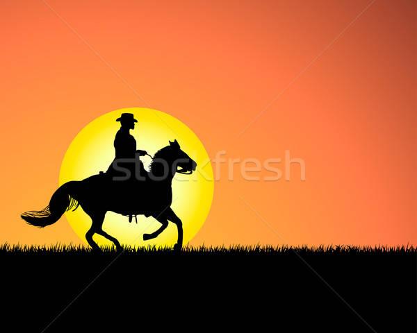 Stockfoto: Paard · zonsondergang · silhouet · hemel · gras · natuur