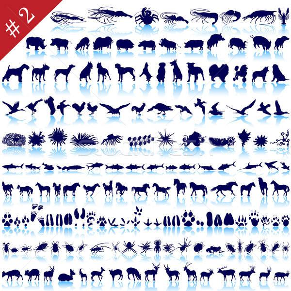 set of animal silhouettes Stock photo © angelp