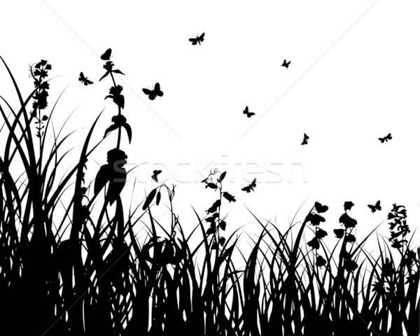 Impianto silhouette erba sagome Foto d'archivio © angelp