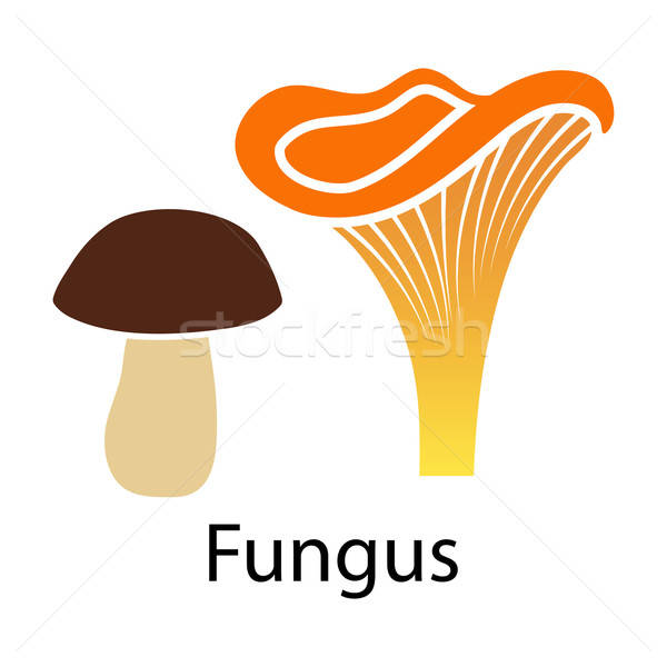 Mushroom icon Stock photo © angelp