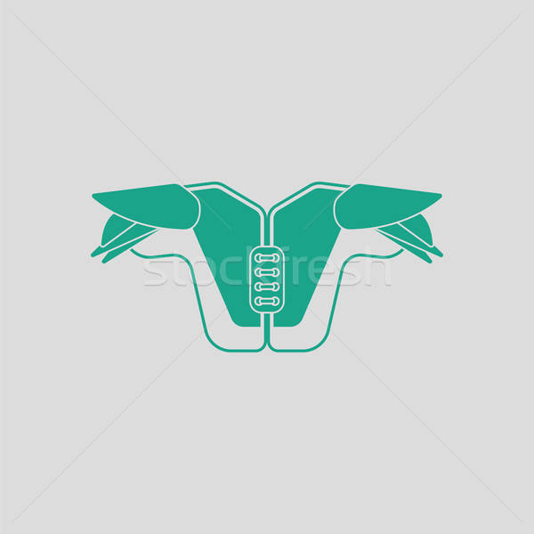 American football chest protection icon Stock photo © angelp