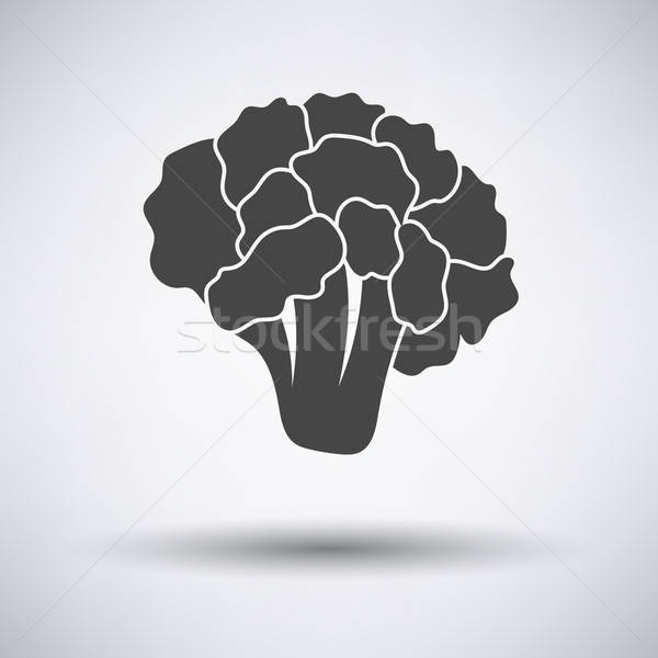 Cauliflower icon on gray background Stock photo © angelp