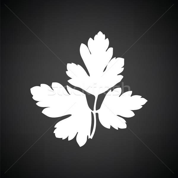 Maydanoz ikon siyah beyaz doğa mutfak siyah Stok fotoğraf © angelp