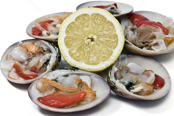 Smooth clams and lemon. Stock photo © angelsimon