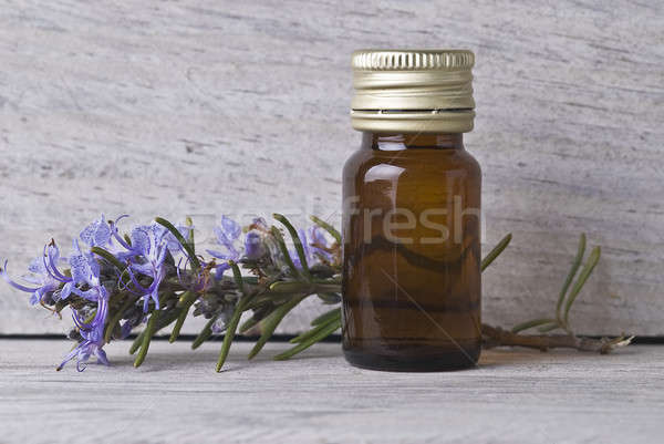 Rosemary and its oil. Stock photo © angelsimon