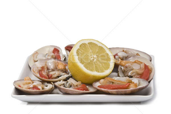 Try with clams. Stock photo © angelsimon