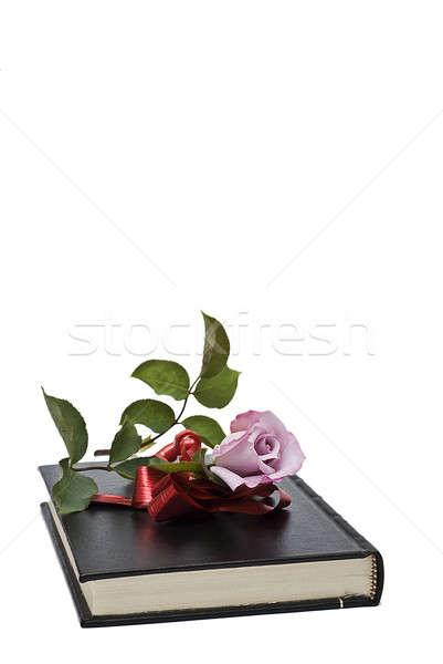Boek steeg geschenk oud boek witte Stockfoto © angelsimon