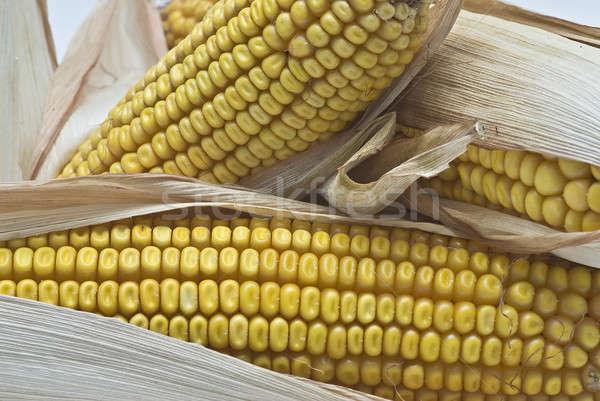 Oren stilleven landbouw gedroogd voedsel Stockfoto © angelsimon