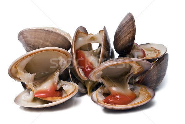 Clams to eat. Stock photo © angelsimon