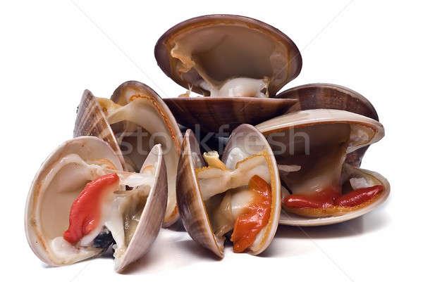 Fresh clams over white background. Stock photo © angelsimon