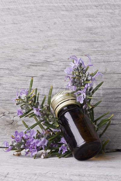 Rozmaryn półka butelki esencja starych Zdjęcia stock © angelsimon