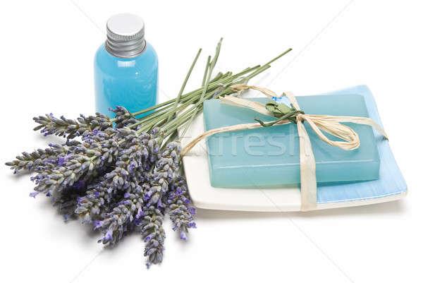 Lavanda gel sabão higiene isolado Foto stock © angelsimon