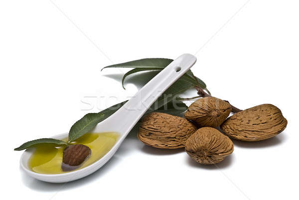 Almond oil in the spoon. Stock photo © angelsimon