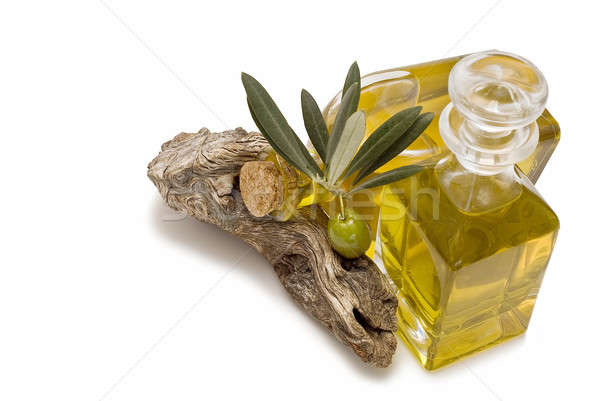 Olive branch and oil. Stock photo © angelsimon