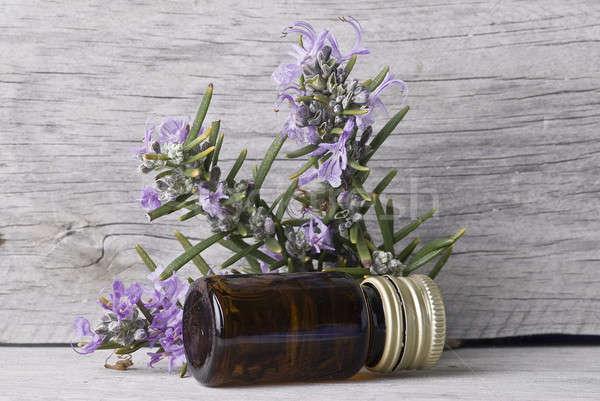 şişe taze biberiye öz eski Stok fotoğraf © angelsimon