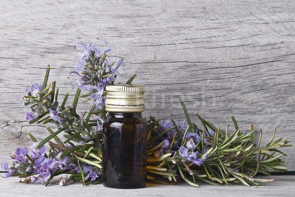 Rozmaryn kwiaty butelki esencja starych Zdjęcia stock © angelsimon