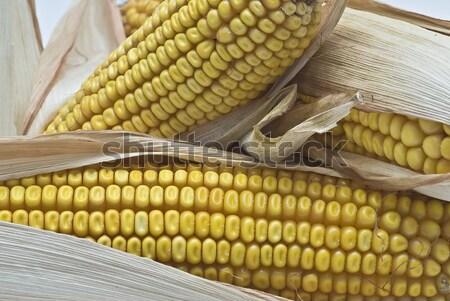 Kulaklar natürmort tarım kurutulmuş gıda Stok fotoğraf © angelsimon