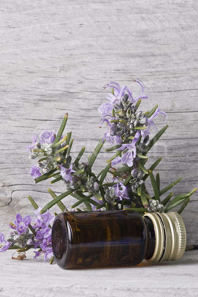 Rosmarijn jar fles essence oude Stockfoto © angelsimon