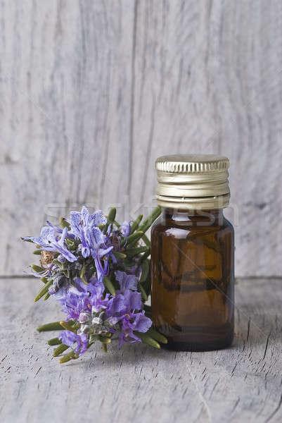 Rozmaryn butelki esencja starych Zdjęcia stock © angelsimon