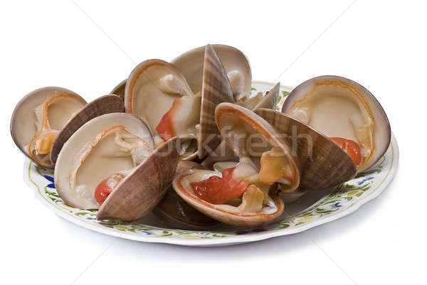 Plate of clams. Stock photo © angelsimon