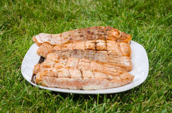 Grelhado salmão peças branco prato grama verde Foto stock © anmalkov