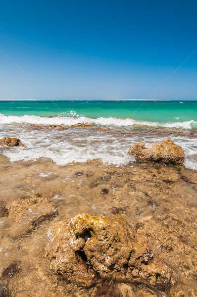 Güzel masmavi kızıl deniz dalgalar kayalar Mısır Stok fotoğraf © anmalkov