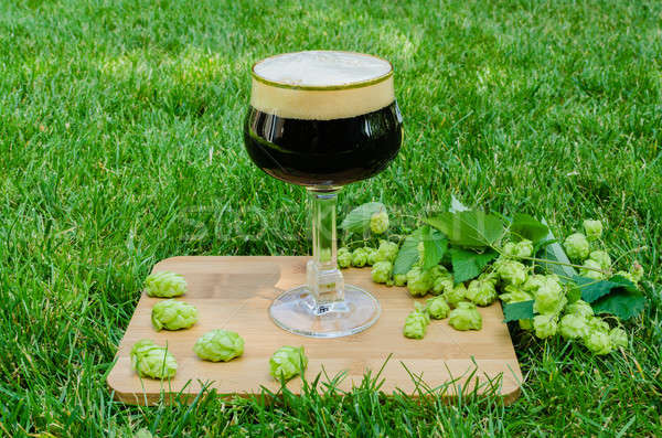 Dark beer with hops on grass Stock photo © anmalkov