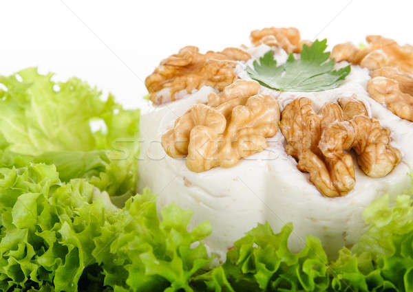 Processed cheese with  walnuts Stock photo © anmalkov