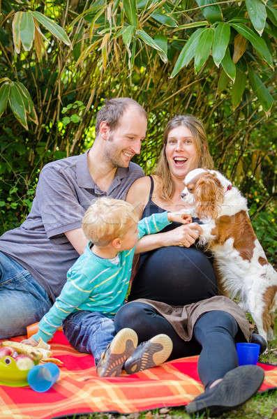 Família feliz grávida mãe piquenique parque feliz Foto stock © anmalkov