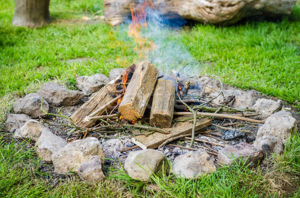 Firewood burning in fire with smoke surrounded by stones Stock photo © anmalkov