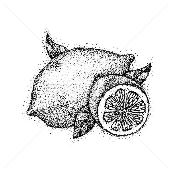 Dotwork Lemon Fruit Stock photo © Anna_leni