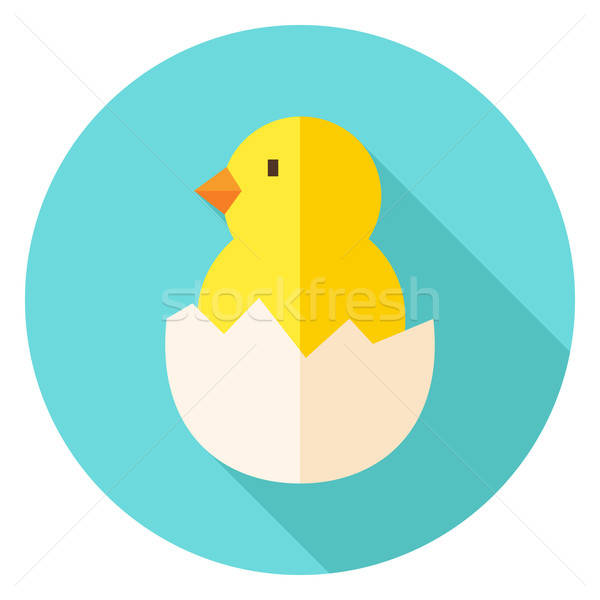 Hatched Chick in Eggshell Circle Icon Stock photo © Anna_leni