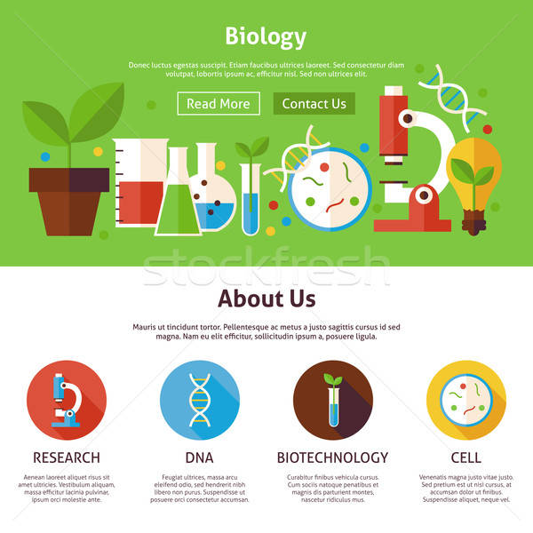 Biologie wetenschap web design sjabloon website banner Stockfoto © Anna_leni