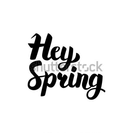 Hello wiosną kaligrafia atramentu szczotki Zdjęcia stock © Anna_leni
