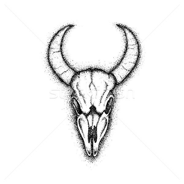 Dotwork Cow Skull Stock photo © Anna_leni