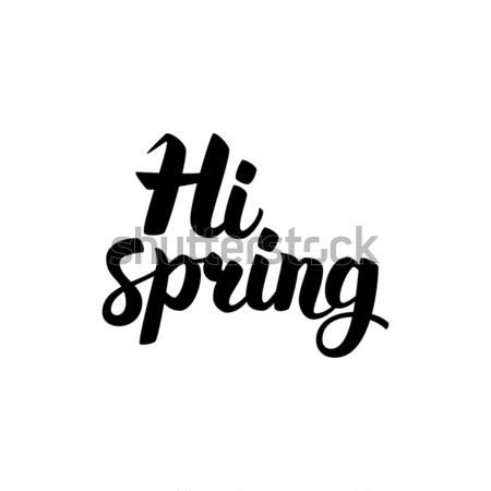 Hi Spring Handwritten Lettering Stock photo © Anna_leni