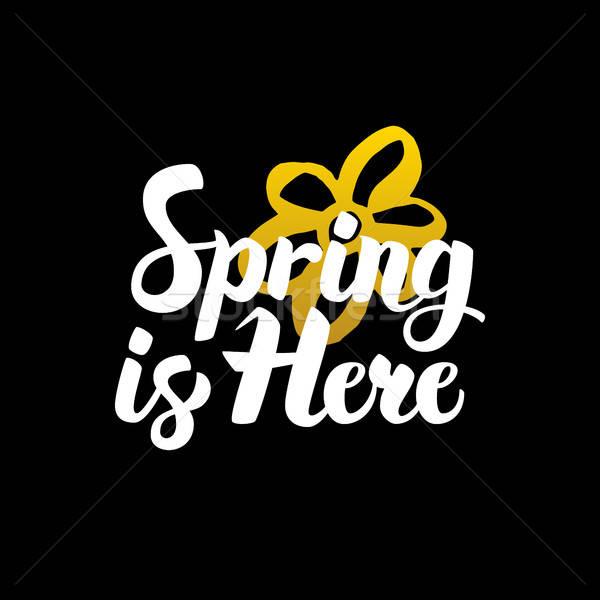 Bahar burada kaligrafi doğa Stok fotoğraf © Anna_leni