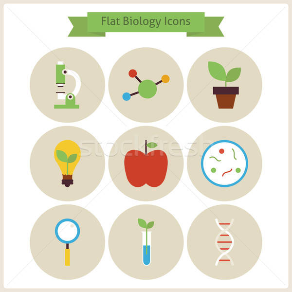 Flat School Biology and Science Icons Set Stock photo © Anna_leni