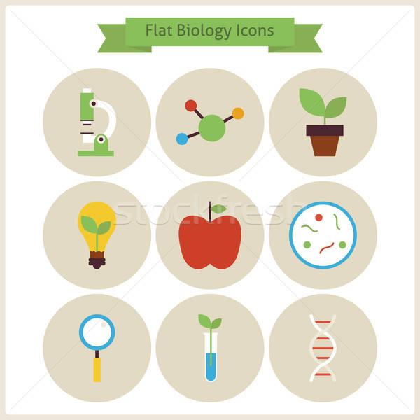 Iskola biológia tudomány ikon szett vektor illusztrációk Stock fotó © Anna_leni