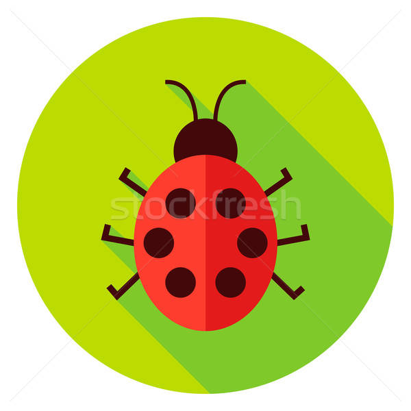 Ladybug Insect Circle Icon Stock photo © Anna_leni