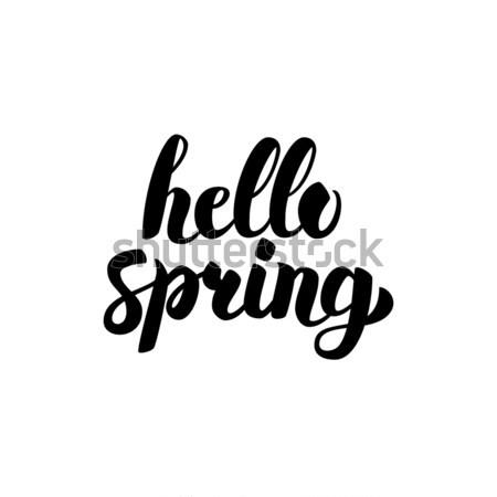 Hallo Frühling Schriftkunst isoliert weiß Hand Stock foto © Anna_leni