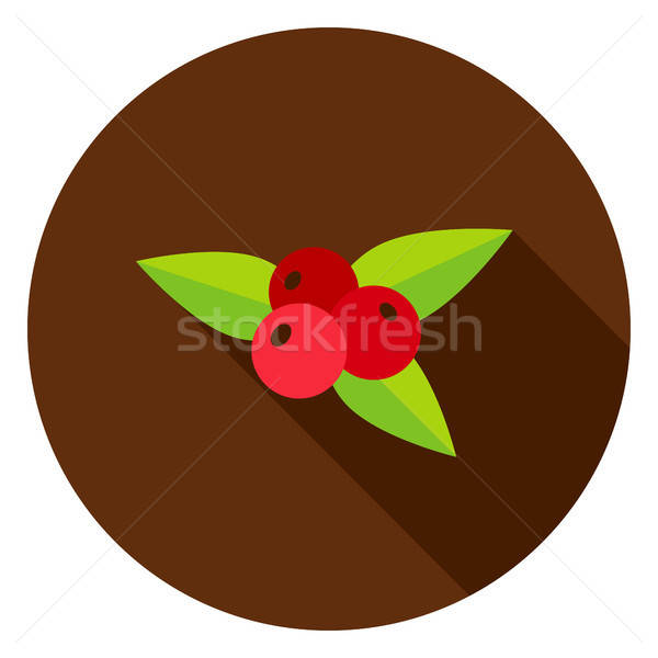 Rowanberry Circle Icon Stock photo © Anna_leni