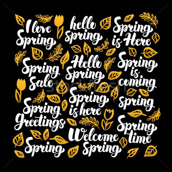 привет весны каллиграфия дизайна природы черный Сток-фото © Anna_leni