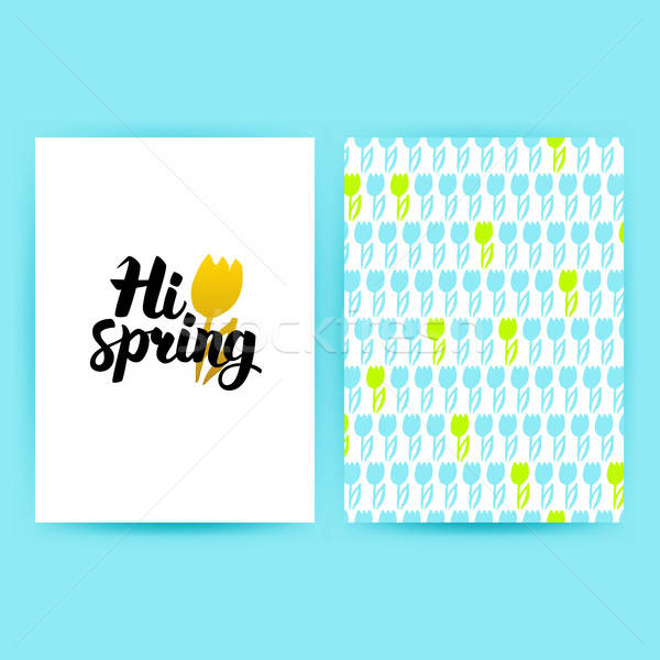 Hi Spring Trendy Poster Stock photo © Anna_leni